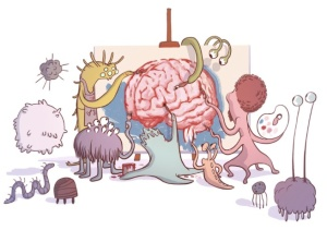 gut microbiome_brain